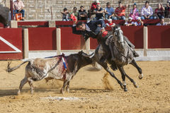 Alvaro Montes, bullfighter on horseback spanish in the bullring of Ubeda, Jaen, Spain Stock Photos