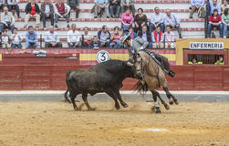 Alvaro Montes, bullfighter on horseback spanish, Jaen, Spain Stock Photos