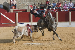 Alvaro Montes, bullfighter on horseback spanish. Ubeda, Jaen, Spain, 29 september 2011 stock image