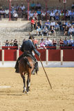 Alvaro Montes, bullfighter on horseback spanish witch garrocha ( Royalty Free Stock Image