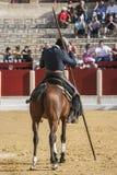 Alvaro Montes, bullfighter na horseback czarownicy hiszpańskim garrocha ( Zdjęcia Stock