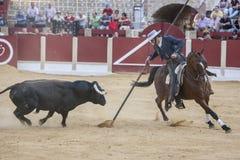 Alvaro Montes, de toréador garrocha espagnol de sorcière à cheval ( Photo stock