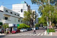 Alvaro Obregon aveny på den trendiga Roma Norte grannskapen i Mexico - stad fotografering för bildbyråer