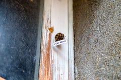 Alveare come casa per affitto Fotografia Stock Libera da Diritti