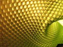 Alveare dell'ape Fotografia Stock Libera da Diritti