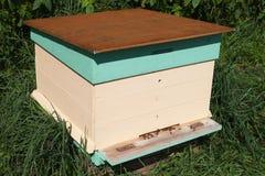 Alveare dell'ape. Immagini Stock Libere da Diritti