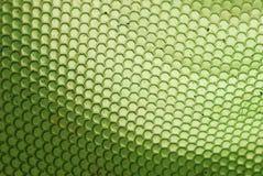 Alveare dell'ape nel verde fotografia stock libera da diritti