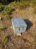 Alveare della scatola di legno Fotografia Stock