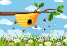 Alveare giallo sul ramo royalty illustrazione gratis