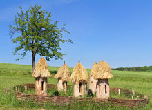 Alveari antichi su un prato, Ucraina Fotografia Stock