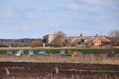 Alveari di legno variopinti in una zona rurale immagine stock libera da diritti