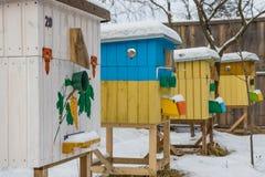 Alveari nell'arnia nell'inverno Immagine Stock Libera da Diritti