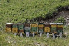 Alveari nelle montagne Fotografia Stock Libera da Diritti