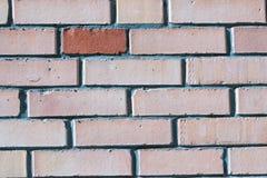 alvenaria vermelha da parede de tijolo do silicato Imagens de Stock Royalty Free