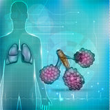 Alveoli and lungs Royalty Free Stock Photos