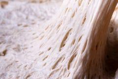Alveolus glutenu matryca zdjęcie stock