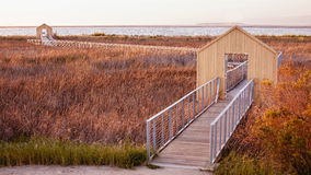 Alviso marina county park Royalty Free Stock Photography