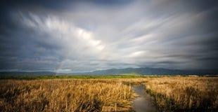 Alvisoregenboog met wolken over moerasland Royalty-vrije Stock Foto's