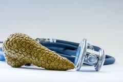Alvleesklier- klier dichtbij stethoscoop als symbool van gezondheid van orgaan, zorg, diagnostiek, het medische testen, behandeli royalty-vrije stock fotografie