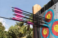 Alvo do tiro ao arco com setas Imagens de Stock Royalty Free