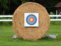 Alvo do tiro ao arco da palha Foto de Stock Royalty Free