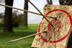 Alvo e javelins Foto de Stock Royalty Free