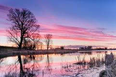 Alvoreça com nuvens cor-de-rosa sobre uma lagoa selvagem cercada por árvores na manhã do outono Imagens de Stock Royalty Free