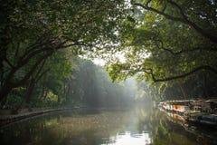 Alvoreça sobre o lago no parque da cidade de Guangzhou, China fotografia de stock royalty free