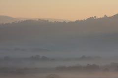 Alvorecer de Misty Hills And Trees At Foto de Stock
