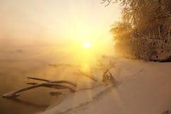Alvorecer do inverno e a névoa Foto de Stock Royalty Free