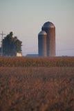 Alvorecer do silo Foto de Stock