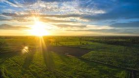 Alvorecer ensolarado da paisagem agrícola em um campo imagens de stock