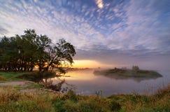 Alvorecer, manhã enevoada no rio Rio nevoento fantástico com carvalhos sobre Imagem de Stock