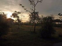 Alvorecer, nascer do sol, árvores, arbustos, marrom, céu, grama, hotel, terraço, manhã, viagem, floresta, natureza, luz, rosa, fé Foto de Stock