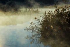 Alvorecer nevoento bonito sobre o rio de Narew fotografia de stock