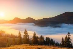 Alvorecer nevoento no outono nas montanhas Imagens de Stock