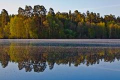 Alvorecer no lago Fotografia de Stock