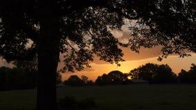 Alvorecer no país com silhueta da árvore Fotografia de Stock Royalty Free