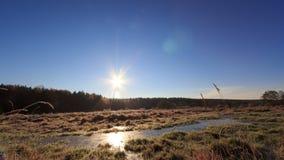 Alvorecer sobre o pântano congelado Lapso de tempo 4K filme