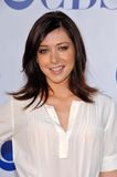 Alyson Hannigan Obraz Royalty Free