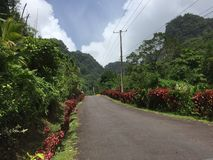 Alza de la cascada del agua de Dominica Foto de archivo