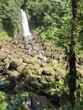 Alza de la cascada del agua de Dominica Imágenes de archivo libres de regalías