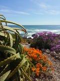 Alza de la costa Fotos de archivo