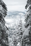 Alza del invierno Foto de archivo libre de regalías