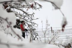 Alza del invierno en Finlandia Foto de archivo libre de regalías