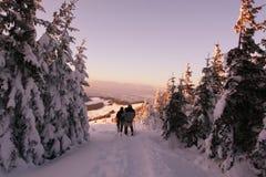 Alza del invierno en puesta del sol Imagen de archivo