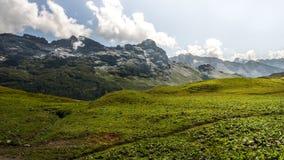 Alza en las montañas suizas - Reuti, Hasliberg del verano Fotos de archivo