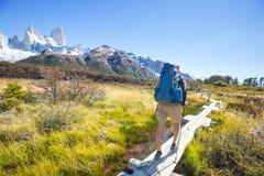 Alza en Patagonia fotografía de archivo