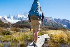 Alza en Patagonia fotos de archivo