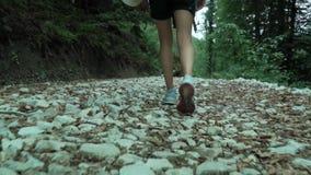 Alza joven de la muchacha del inconformista por la pista blanca de los guijarros en el bosque del verano, llevado de los zapatos  almacen de metraje de vídeo